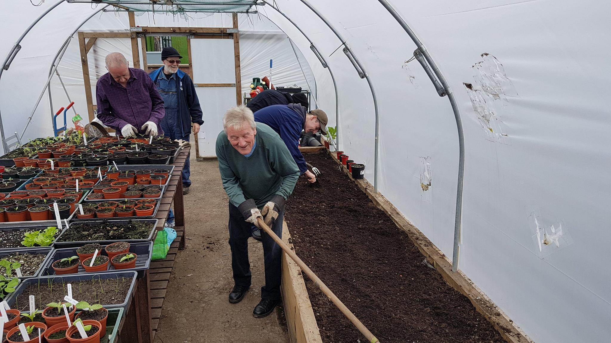 many hands make light work in the polytunnel