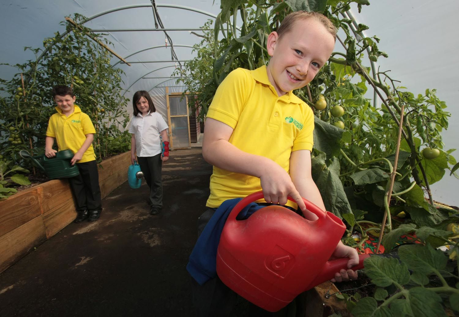 Three kids watering plants in the polytunnel