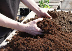 Potting mixes